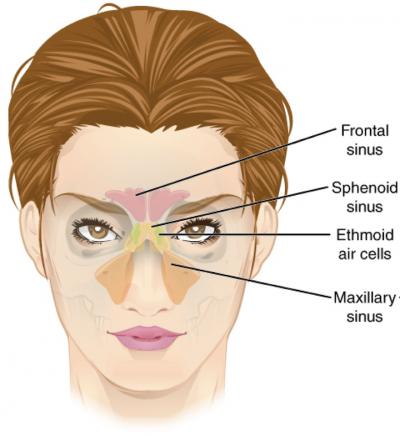tmj-disorder-headache-massage